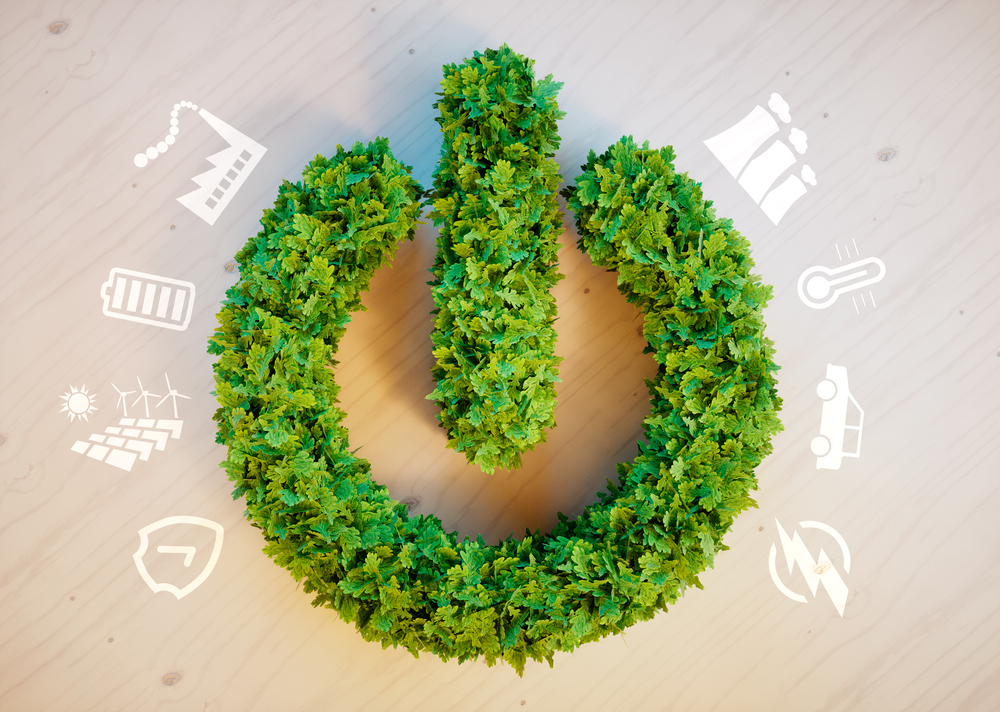 Sustentabilidade em pauta: cinco maneiras do consumidor obter energia renovável